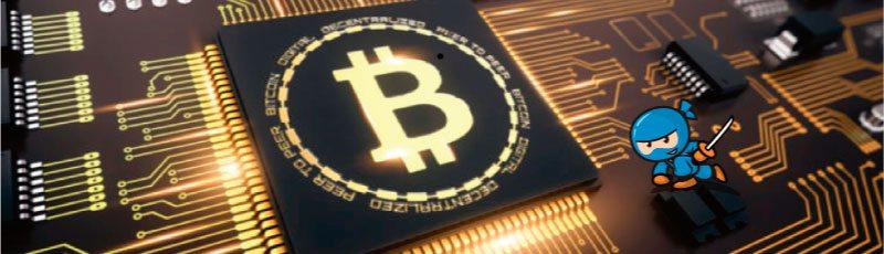 Kryptowaluty to nie tylko Bitcoin. Co warto o nich wiedzieć?
